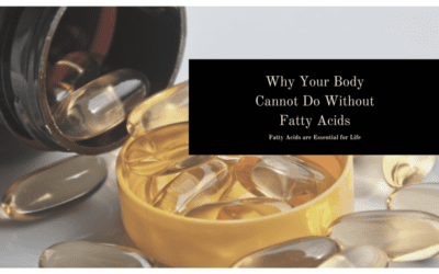 Why Your Body Cannot Do Without Fatty Acids